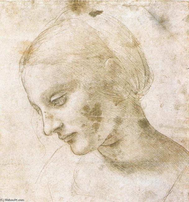 Studio di una testa di donna, 1490, Leonardo da Vinci